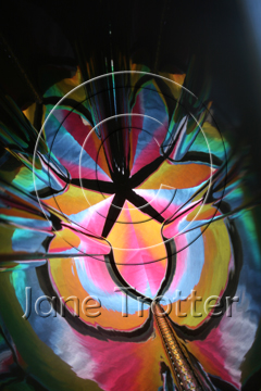 The original photograph which is the basis for Colour Cathedral - Abstract Art by Jane Trotter