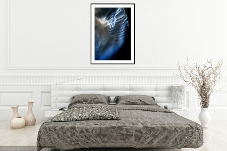 Angel Wing - On the Wall. A Fine Art Print from Abstracted Reality