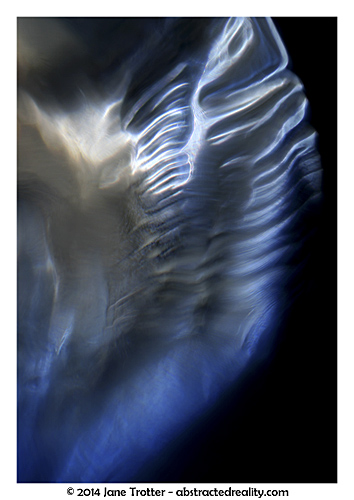 Angel Wing - Abstract Photography by Jane Trotter